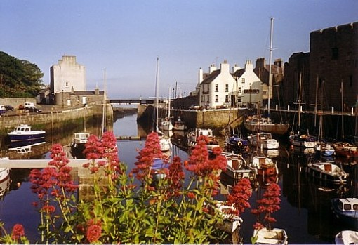 IOM-Castletown Harbour Flowers